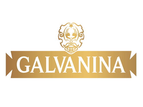 Galvanina Logo