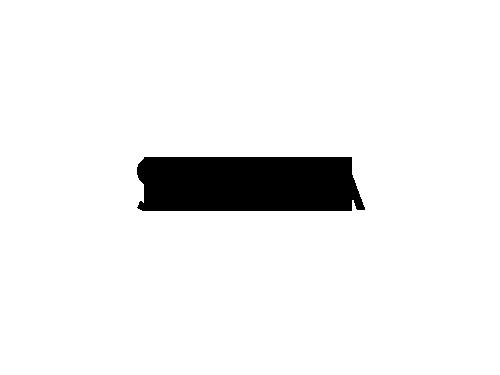 Skyra Logo