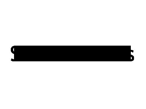 Silver Falls Logo